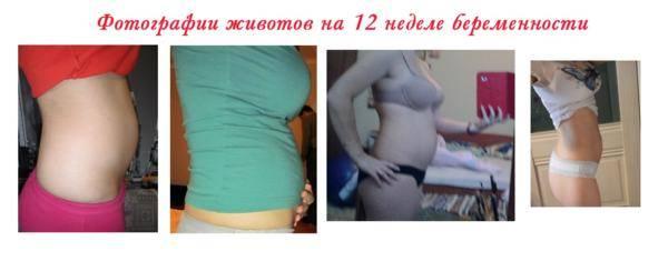 15 дней беременности после эко