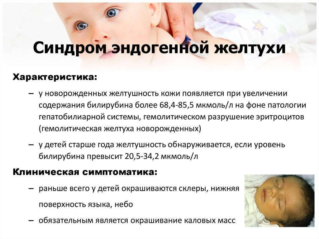Желтухи новорожденных: причины, лечение, прогноз — онлайн-диагностика