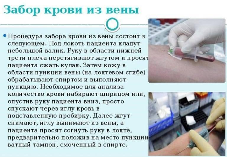 Сдаем биохимический анализ без ошибок. 5 правил подготовки к сдаче крови :: polismed.com
