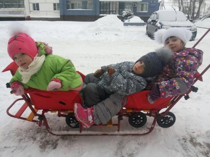 Cанки с рулем. на чем катать ребенка зимой: виды и обзор популярных моделей санок