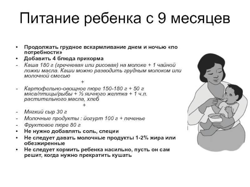 Пить воду новорожденному: нужно ли и можно ли давать, когда начинают вводить в рацион грудному ребенку, дают ли водичку грудничку при икоте?