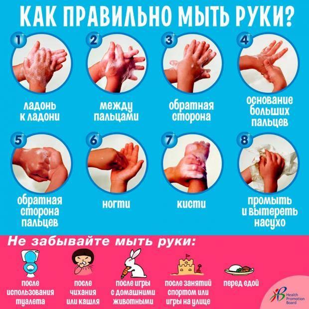 Конспект открытого занятия «научим неумейку мыть руки»