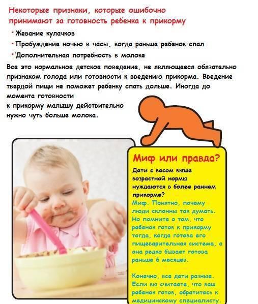 Готов ли ребенок к прикорму? дополнительные признаки готовности- энциклопедия детское питание