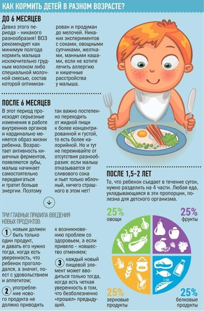 Питание ребенка до года: прикорм, меню и режим