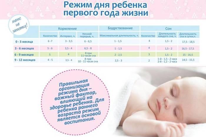 Почасовой режим дня грудничка по месяцам жизни + видео комаровского