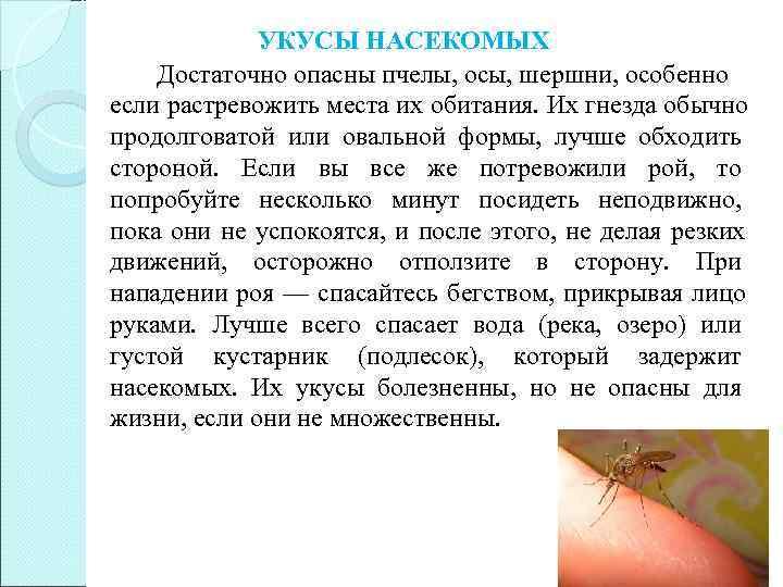 Аллергия на укусы насекомых. типы аллергических реакций. умеренная и острая  аллергия. что делать при укусе насекомых?