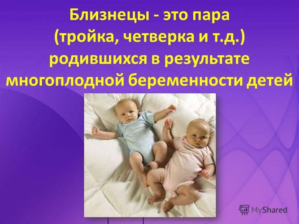 Сладкая парочка или как воспитать близнецов