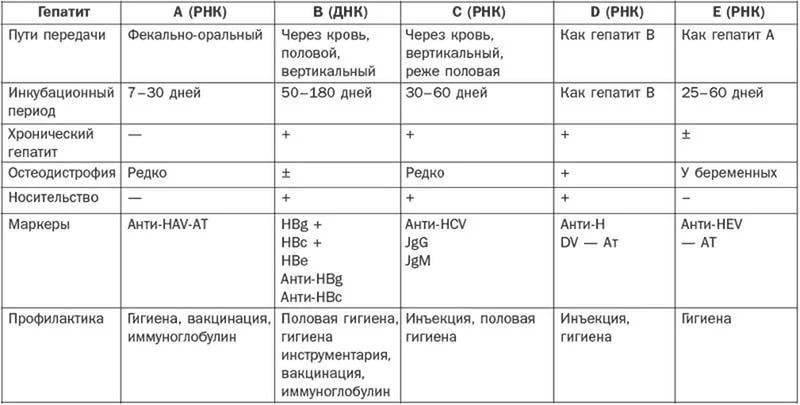Краснуха у беременных - симптомы болезни, профилактика и лечение краснухи у беременных, причины заболевания и его диагностика на eurolab