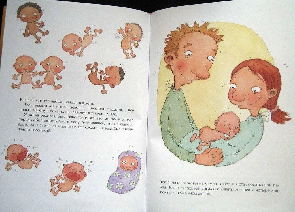 Как ребенку объяснить, откуда берутся дети? мультик: откуда берутся дети?