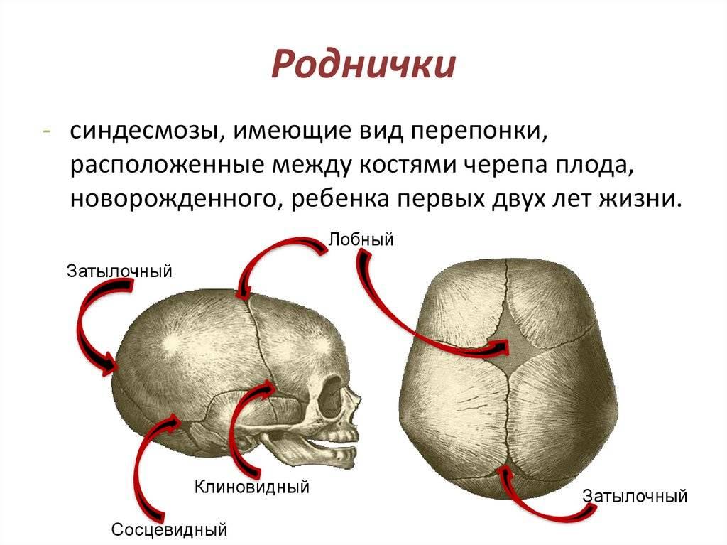 Боль в темени, болит теменная часть головы, причины боли