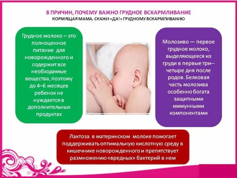 Грудное вскармливание: советы кормящей маме, ответы на вопросы
