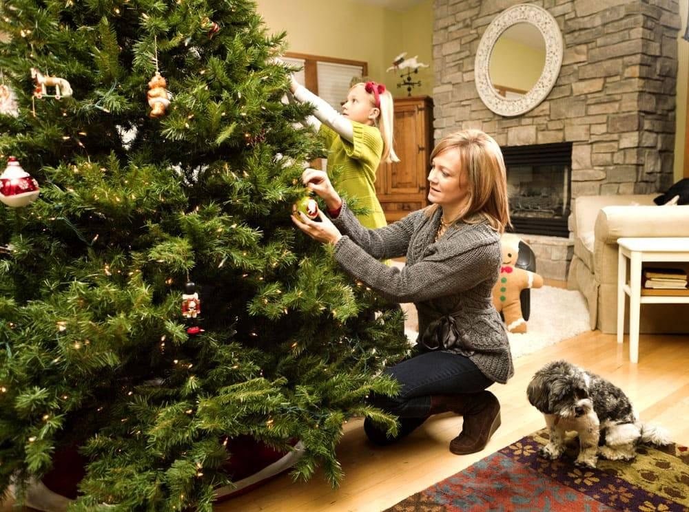 Когда нужно убирать новогоднюю елку в 2021 году: до или после крещения, традиции, народные приметы
