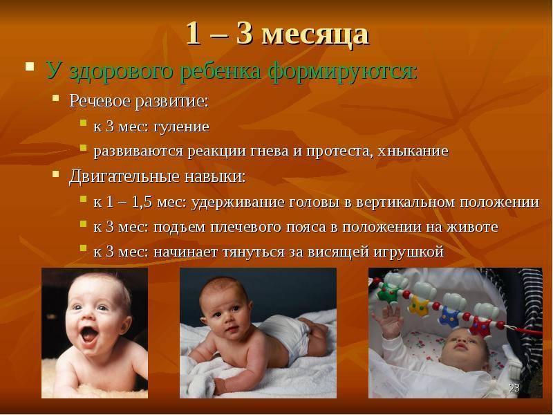 Ребенок в 3 месяца – развитие ребенка. что умеет, сколько должен спать ребенок в 3 месяца?
