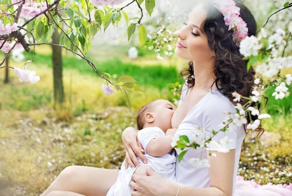 Отдых с ребенком и кормление грудью. 8 советов кормящей маме. все о грудном вскармливании