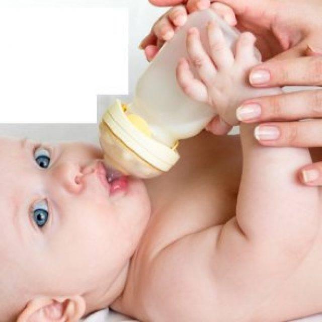 Козье молоко при беременности