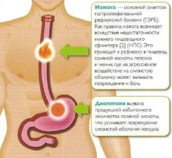 Проблемы с пищеварением у ребенка: симптомы и лечение
