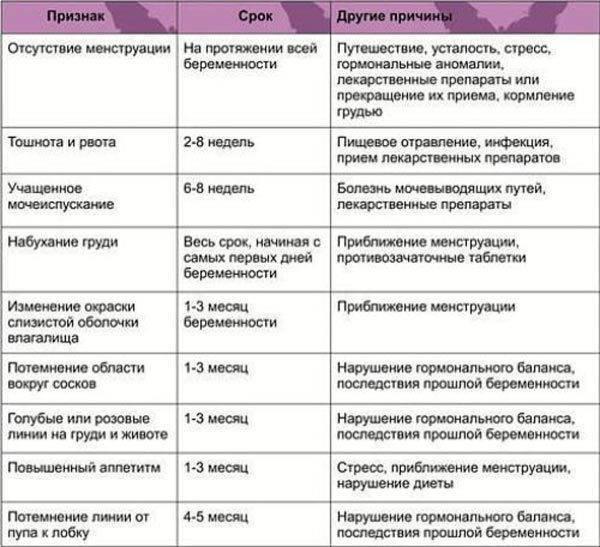 Признаки беременности: две полоски, тест и другие способы определить беременность