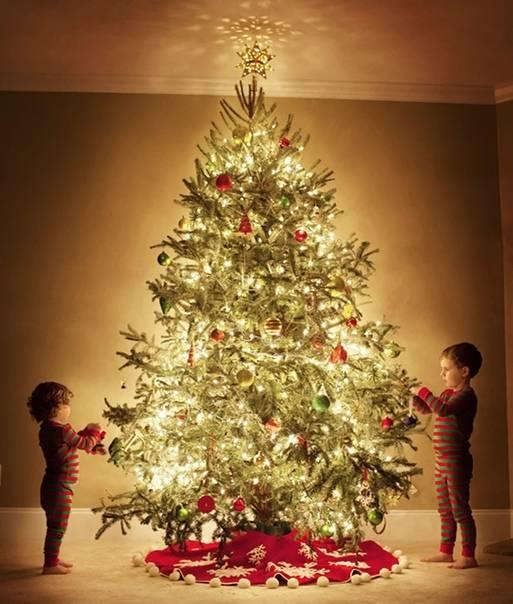 Когда нужно, принято разбирать елку после нового года: народные приметы. можно ли убирать новогоднюю елку в рождество, после рождества? сколько должна стоять живая елка дома после нового года?