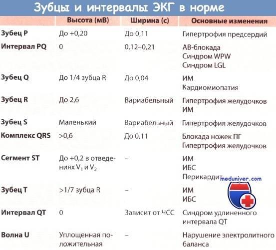 Экг ребенку в москве - сделать с расшифровкой в клинике семейный доктор