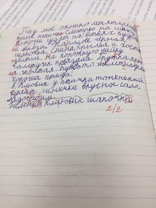 Как научить ребенка правильно писать без ошибок?