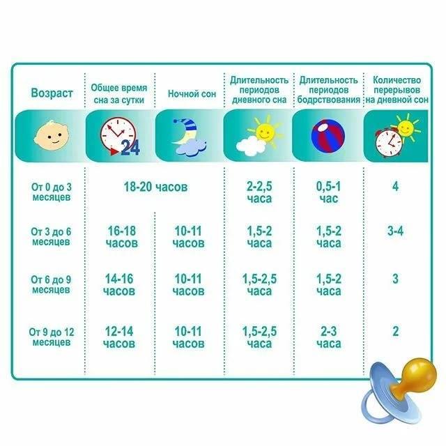 Сколько должен спать ребенок в возрасте от рождения до полугода?