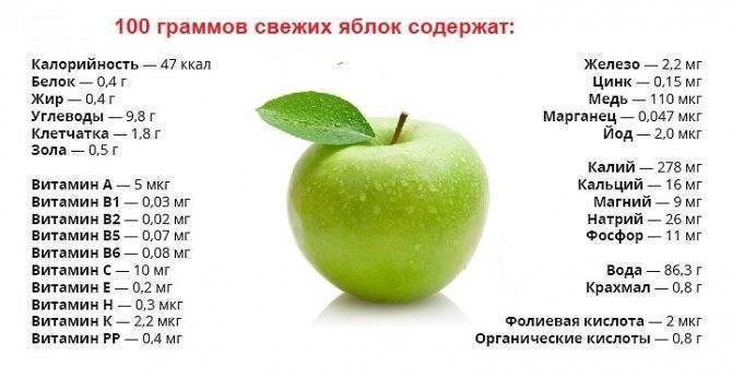 Яблоки при грудном вскармливании: можно ли