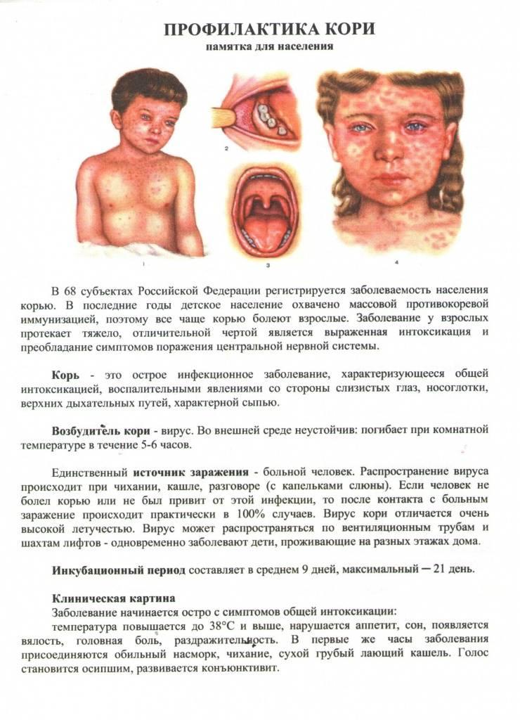 Прививка от кори, эпидемического паротита и краснухи : инструкция по применению | компетентно о здоровье на ilive