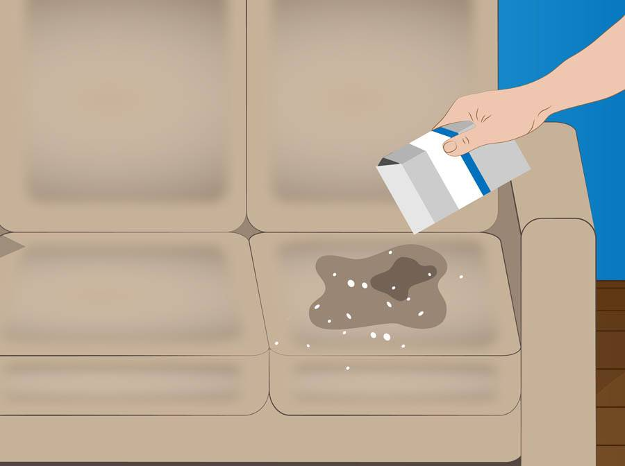 Как избавиться от запаха мочи на диване