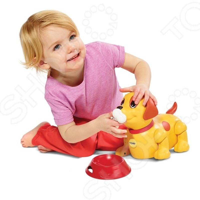 10 лучших развивающих игрушек для детей от 3 лет