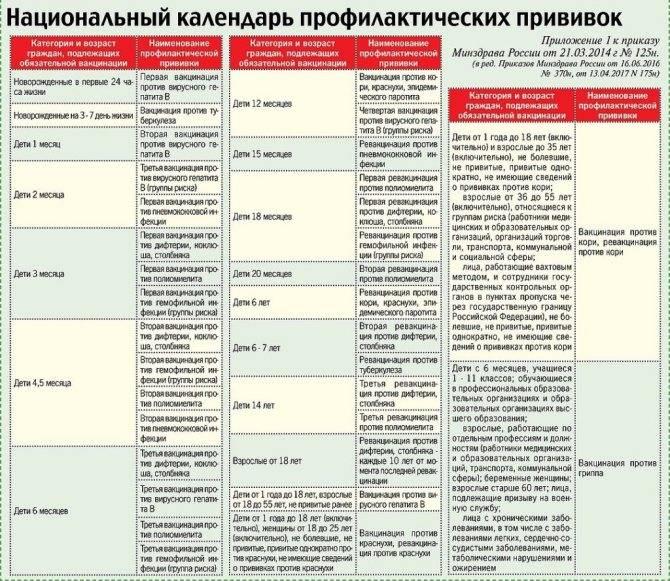 Календарь прививок детям до 1 года (в россии)