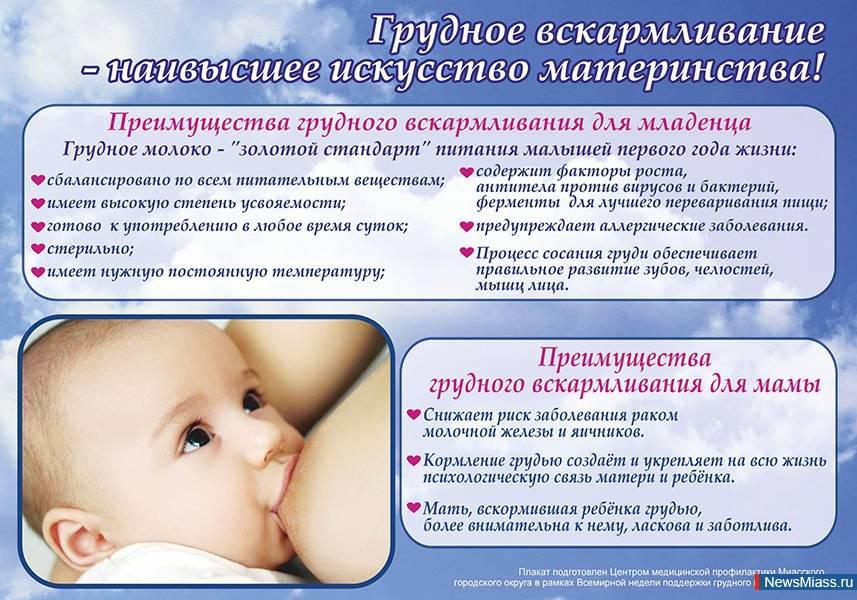 Акев - консультанты по грудному вскармливанию - хочу стать консультантом по грудному вскармливанию. где учиться?