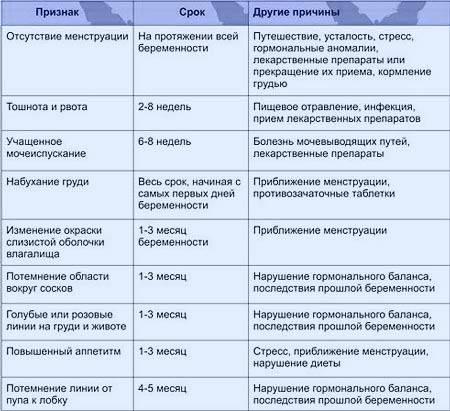 Эмбриологические аспекты эко/икси
