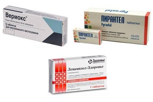Энтеробиоз (острицы) - причины, симптомы, современная диагностика, лечение и профилактика