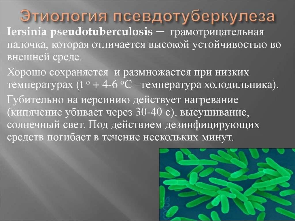 Антитела к возбудителям псевдотуберкулеза, yersinia pseudotuberculosis рнга (титр)