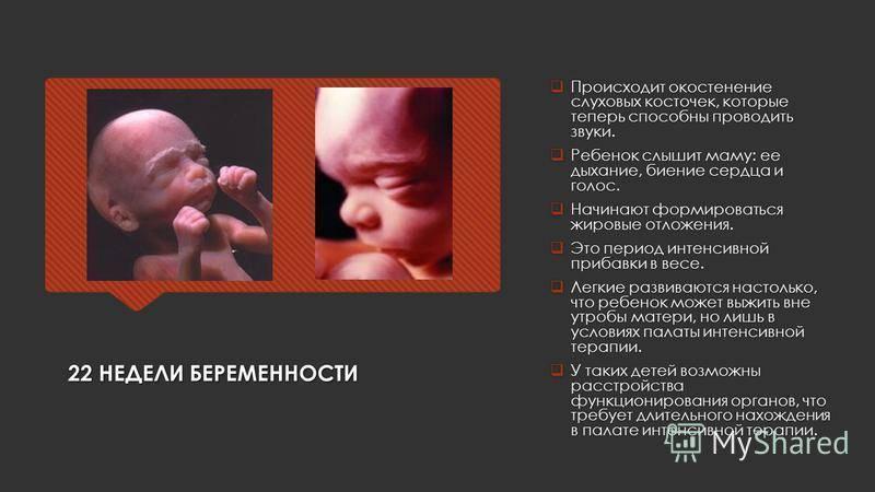 Фото узи ребенка на разных сроках беременности