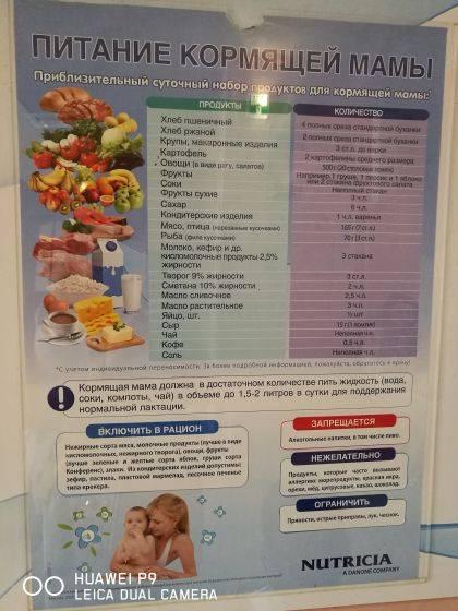 Правила питания кормящей мамы - современный и традиционный подход