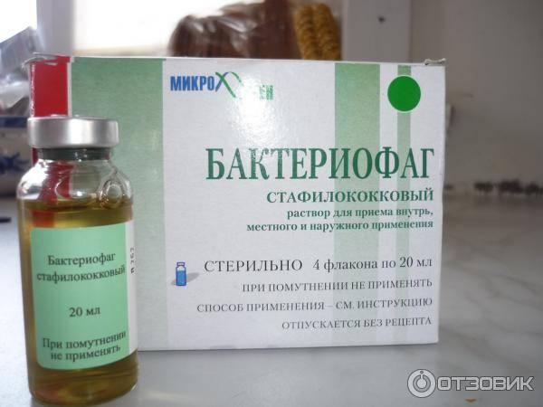 Посев на золотистый стафилококк (s. aureus): исследования в лаборатории kdlmed