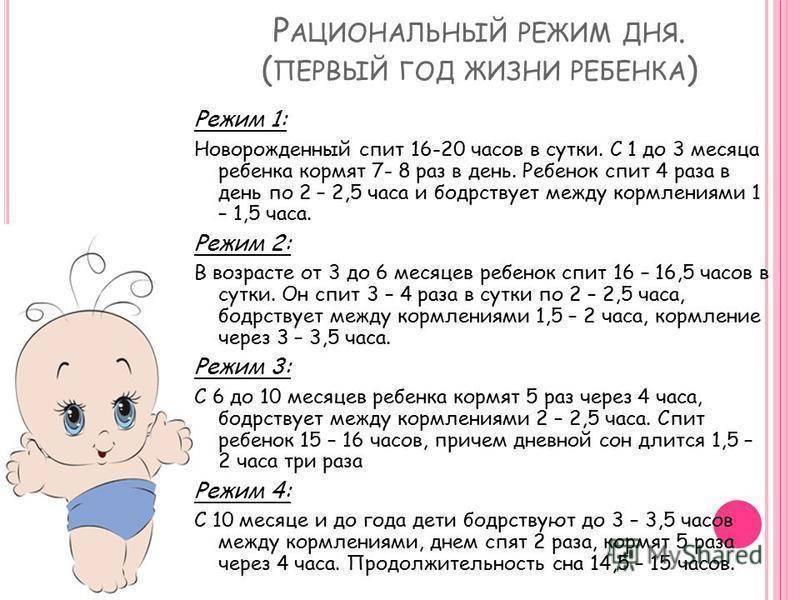 Рекомендации педиатров – режим дня ребенка в 1 год и 3 месяца