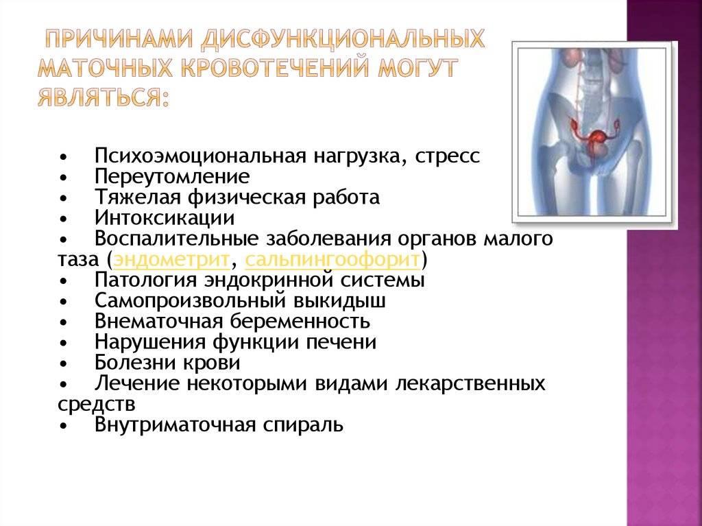 Кольпоскопия шейки матки: что это? рекомендации гинеколога