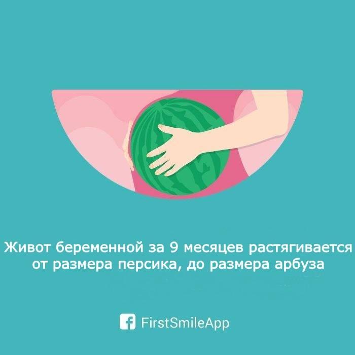 Подростковая беременность | компетентно о здоровье на ilive