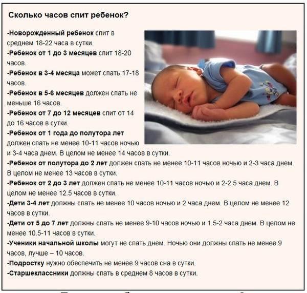 Как часто младенец может спать за сутки и как долго | салид