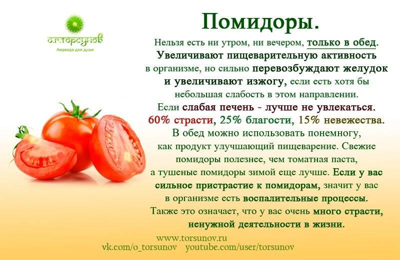 Вводим помидоры в прикорм