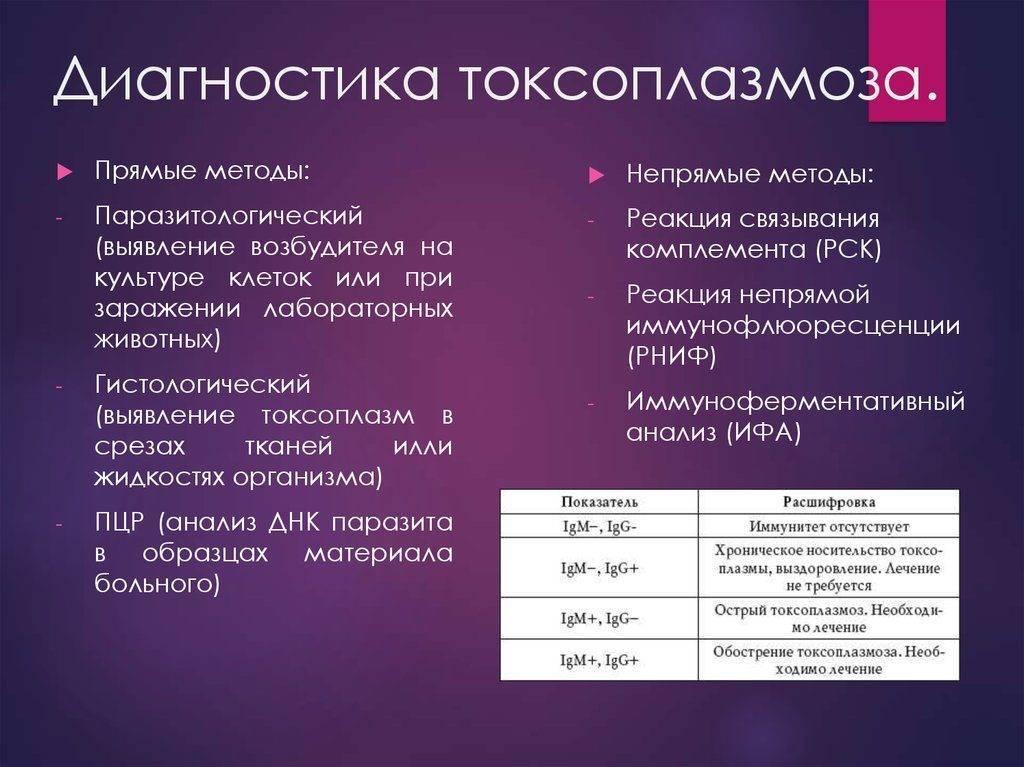 Токсоплазмоз - симптомы болезни, профилактика и лечение токсоплазмоза, причины заболевания и его диагностика на eurolab