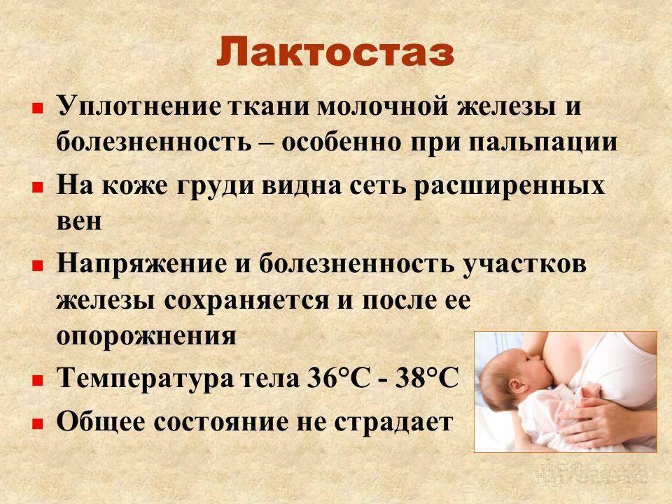 Как повысить количество грудного молока: советы молодым мамам