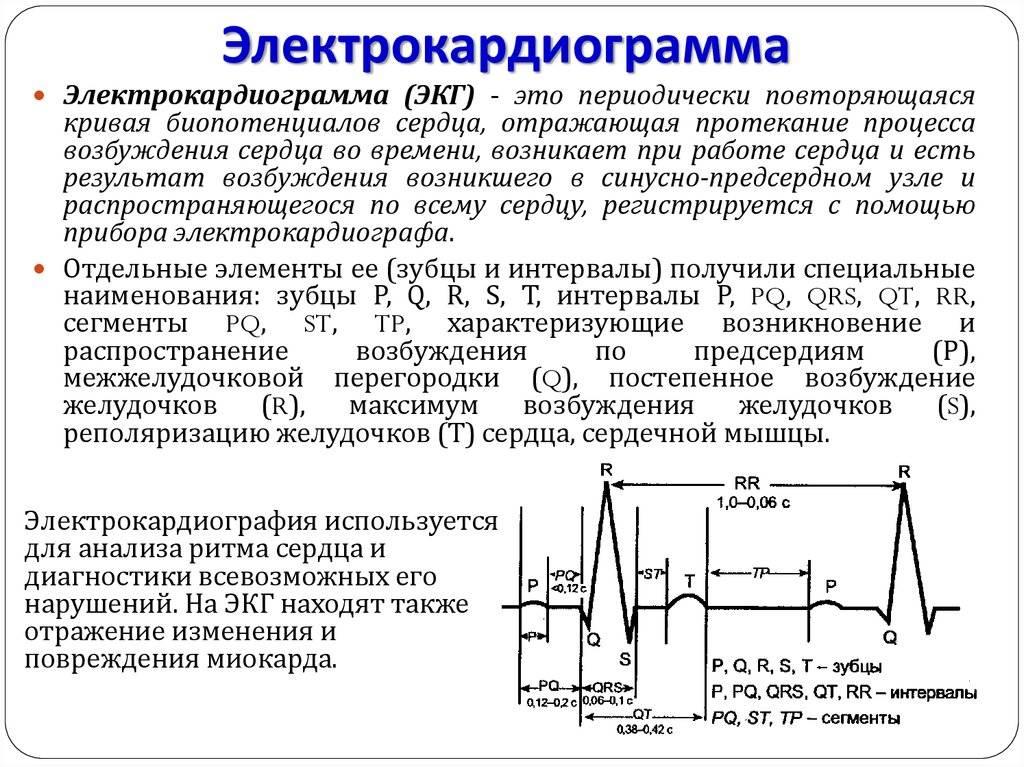 Электрокардиография: что это такое, как делается