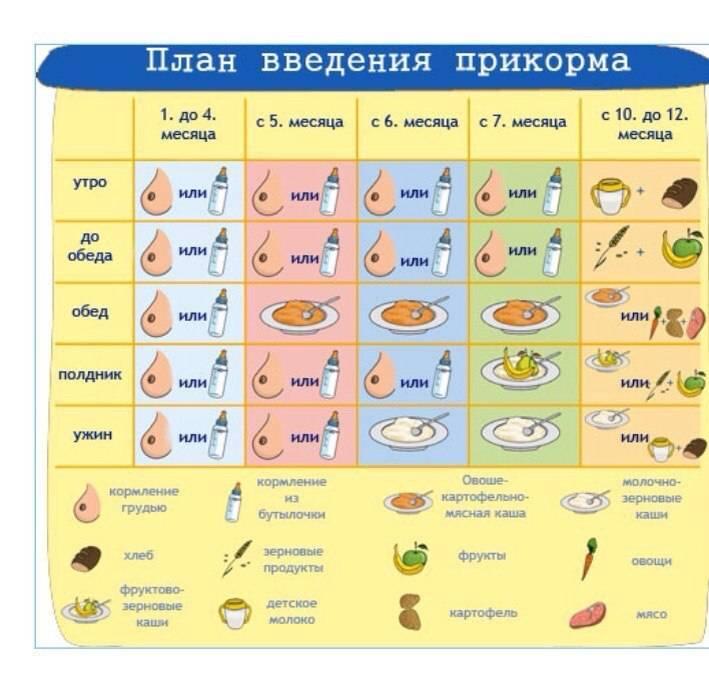 Бананы при грудном вскармливании: можно ли кормящей маме в первый месяц и другие особенности употребления при лактации