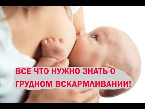 Полный свод мифов и заблуждений о грудном вскармливании - грудное вскармливание - страна мам