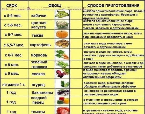 Лечение мастопатии травами и овощами | компетентно о здоровье на ilive