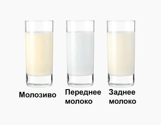 Какое на вкус грудное молоко – на что оно похоже и от чего зависит вкус