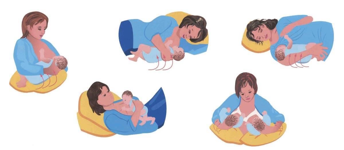 Позы для гв новорожденных: как удобно приложить ребенка к груди